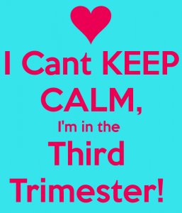 i-cant-keep-calm-im-in-the-third-trimester-